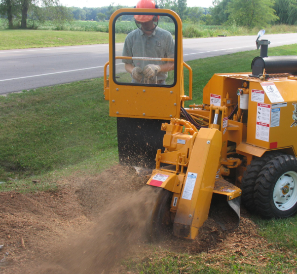 this is an image of stump grinding service in Camarillo
